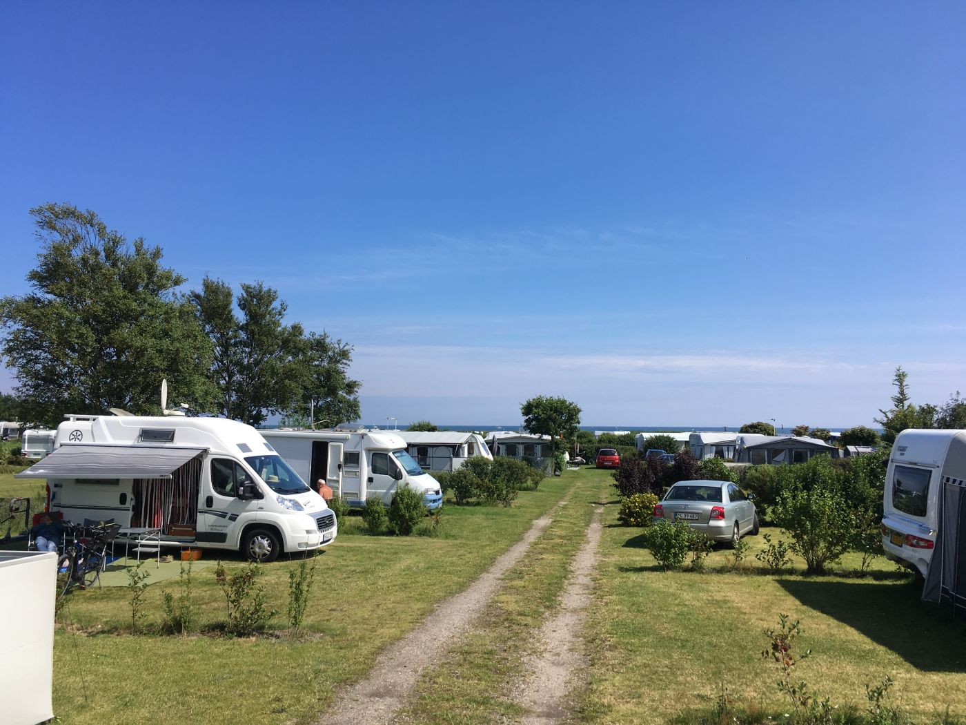 Hals Strand Camping pladsen